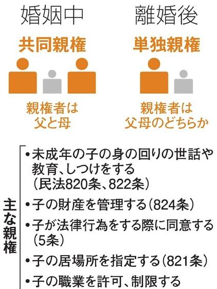 日本の親権制度探偵